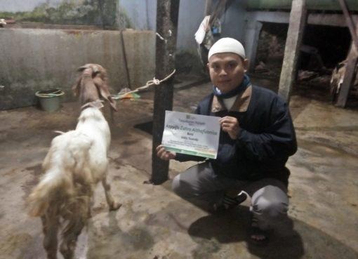 program aqiqah insan madani