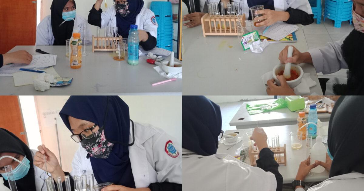 praktikum laboratorium